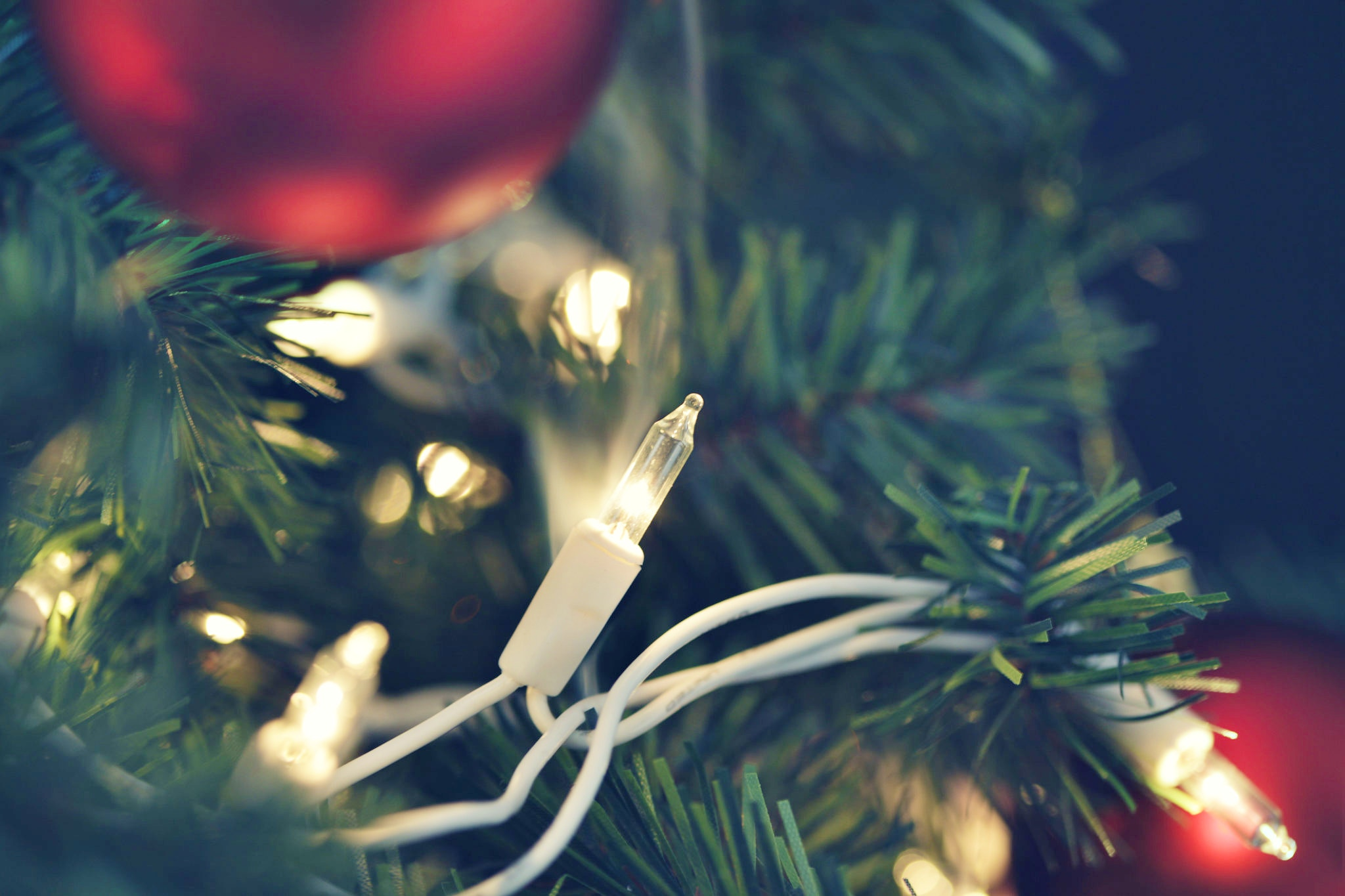 Making your home safer this holiday season